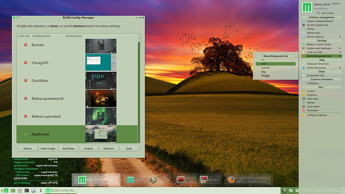MaboxLinux20.02-right-side-panel
